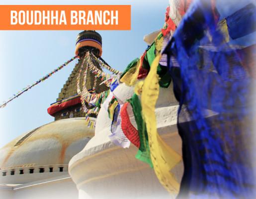 bouddha-branch